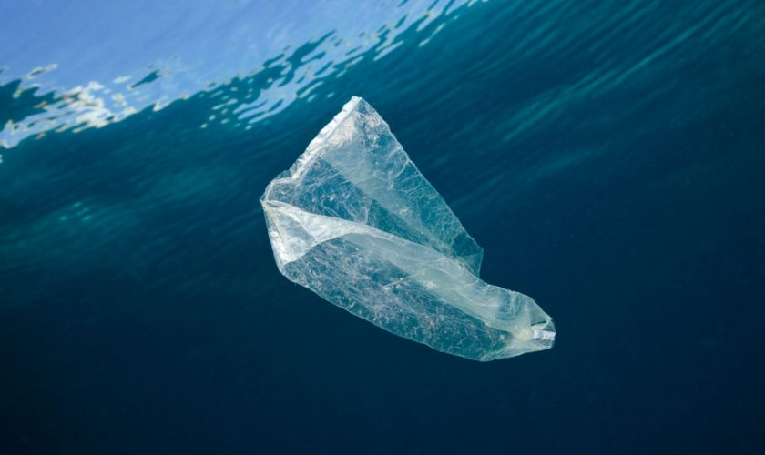 Breitling & Ocean Conservancy